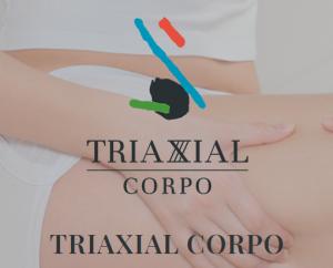 Read more about the article Sabe o que é o Método Triaxial Corpo?